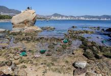 México, cuarto país más peligroso para defensores ambientales