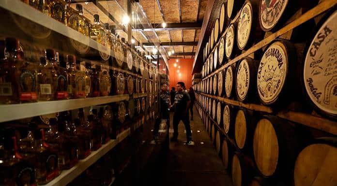 Oficina protege marca tequila en 28 países de la Unión Europea'>