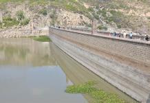 Retiro de lirio en presa San José costará 8 mdp
