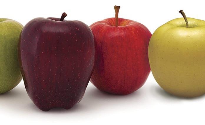 Alimentos ricos en fibra para mejorar la digestión