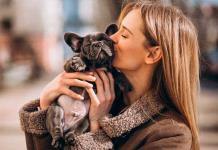 Alimentos que los perros sí pueden comer