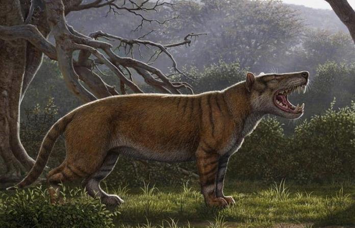 Identifican el fósil de un nuevo mamífero gigante, el gran león africano