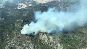 Activos, cinco incendios forestales en SLP