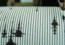 Registran sismo de 5.0 al norte de Chile