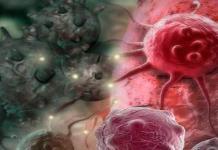 Células cancerígenas se hacen inmortales con vitamina C, según investigadores chilenos
