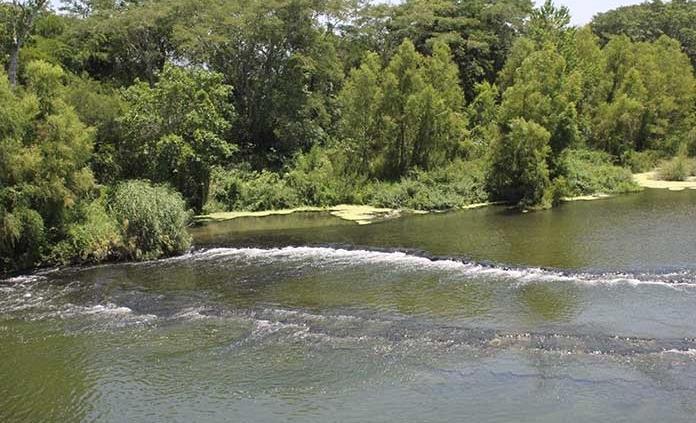 Advierten de concentraciones altas de antibióticos en ríos del mundo