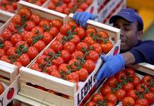 Inflación llega a 3.78% en julio, nivel más bajo en dos años y medio