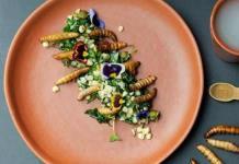 Disfruta la temporada de insectos en restaurantes de la CDMX