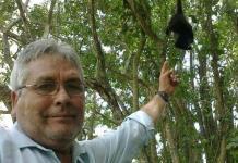 El peligro de ser activista ambiental en México