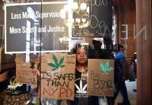 Senado de Nueva York despenaliza posesión de marihuana