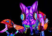 Alebrijes, el arte popular que atrae a niños y jóvenes