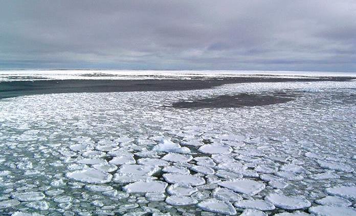 Hielo que circula la Antártida se reduce significativamente