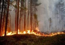 El cambio climático no está en el radar del nuevo gobierno, dicen especialistas