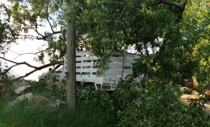 Árbol cae encima de una camioneta estacionada