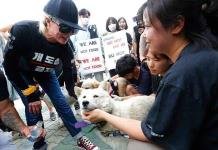 Kim Basinger encabeza protesta contra el consumo de carne de perro en Surcorea