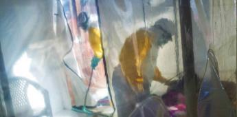 Monos se volvieron inmunes tras inocularles virus del Ébola con mutación