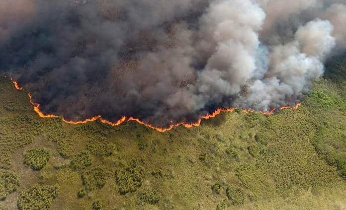 Más incendios por cambio climático