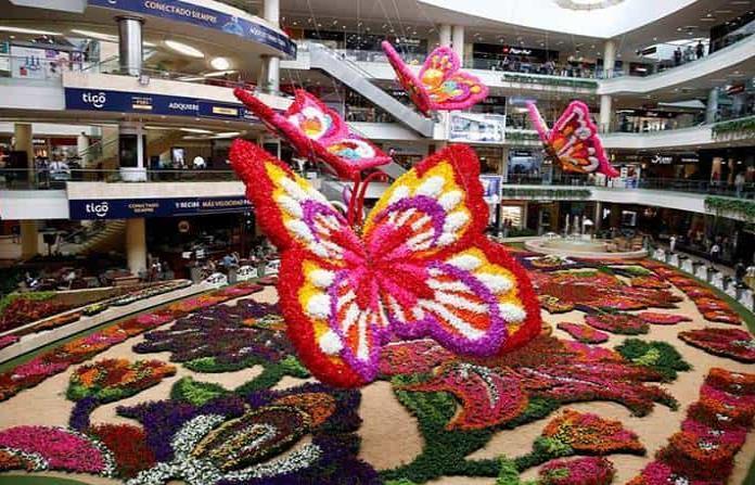 Un tapiz con 189 mil flores y mariposas en vuelo pinta de colores a Medellín, Colombia