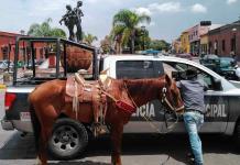 Con cabalgata incluida, integrantes de la UCD protestan en Carranza