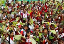 India dice que sembró 220 millones de árboles en un día