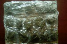 Seis detenidos y 59 dosis de drogas aseguradas, el saldo de operativos de la SSPE