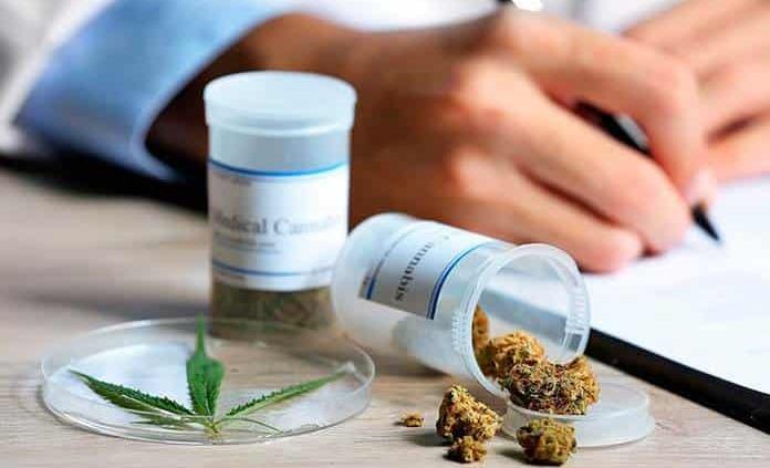 Cannabis, una alternativa contra enfermedades de la piel