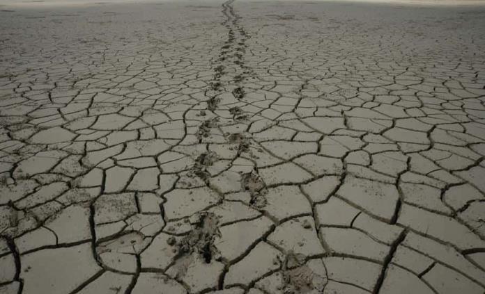 Crisis climática aumenta niveles de ansiedad y depresión: ONU