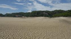 Se seca una laguna en la selva de Chiapas por crisis climática