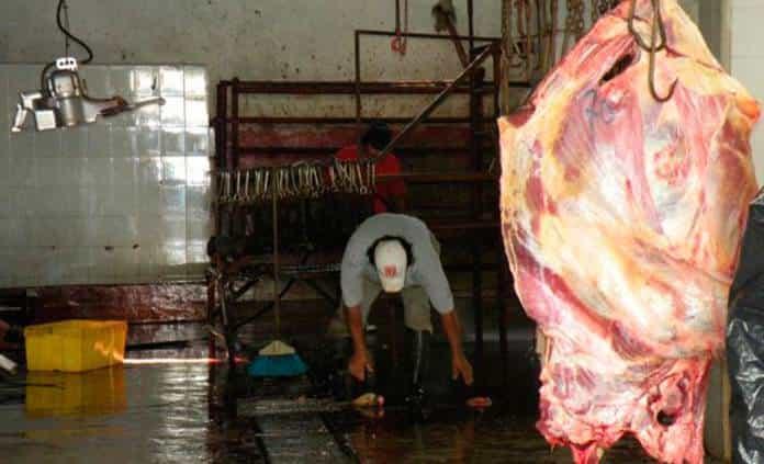 Prevén aumente venta de carne por fiestas patrias
