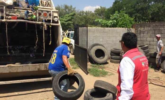 Suman 510 casos de dengue en el Estado