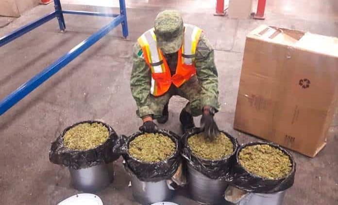 Aseguran 15 kilos de mariguana en el Aeropuerto