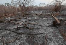 Comprometen más ayuda para incendios en Bolivia