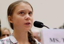 Escarabajo recibe nombre de activista sueca Greta Thunberg