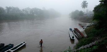 Deforestación en Panamá amenaza corredor biológico americano