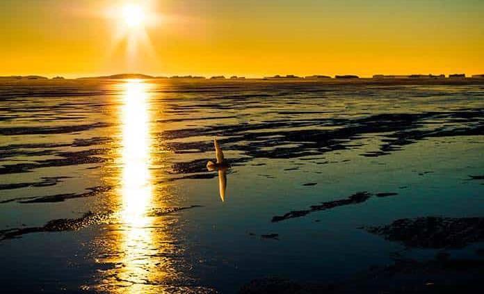 Cambio climático: octubre de 2019, el mes más caluroso jamás registrado en la historia