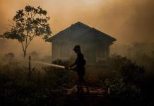California presenta un gel que ayudará a prevenir incendios forestales