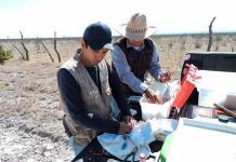 IPICYT mide daño al hábitat de las aves