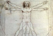 La Justicia italiana bloquea el préstamo del Hombre de Vitruvio al Louvre