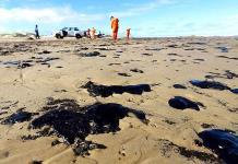 Manchas de petróleo derramado en Brasil llegan a Salvador de Bahía
