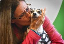 Mujer de Florida encuentra a su perra perdida hace 12 años