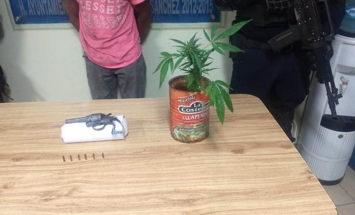 Arrestan a hombre que traía un arma de fuego y una planta de marihuana