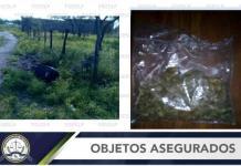 Sorprenden a un hombre con una bolsa de marihuana en Rioverde