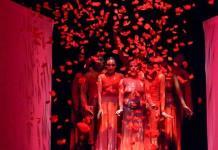 Núcleo-Danza Escénica celebrará aniversario