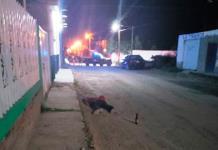 Asesinan a un hombre tras salir de un billar