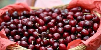Alimentos orgánicos, en auge. ¿Cómo evitar engaños?