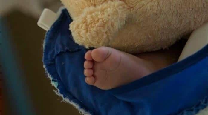 Bebés de 4 meses pueden reconocer a sus padres mediante un abrazo'>