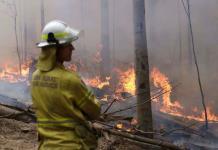 Critican a fundador de Amazon por donación contra incendios en Australia