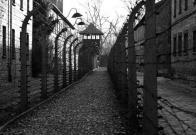 Era más delgado. Precisaba menos para vivir, recuerda sobreviviente de Auschwitz