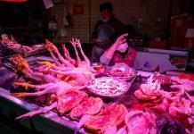 Gastronomía salvaje, ¿el origen del coronavirus?
