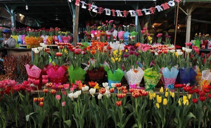 Con millones de flores, los productores mexicanos cumplen en San Valentín
